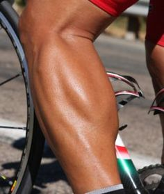 Cyclists Legs